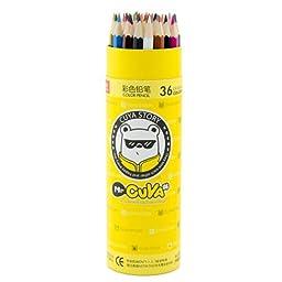 12/24/36/48 Color Oil Pastel Pencils Set Artist Sketching Drawing Colored Pencil (36Color)
