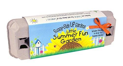 Backyard Safari Co Sunny-Side Up Gardens, Little Summer Fun Garden - 1