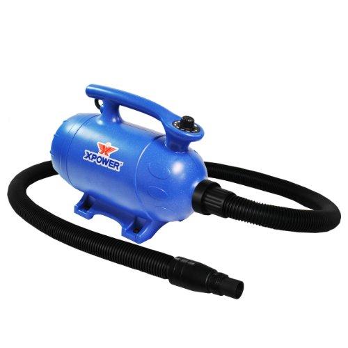 Vacuum A Dog