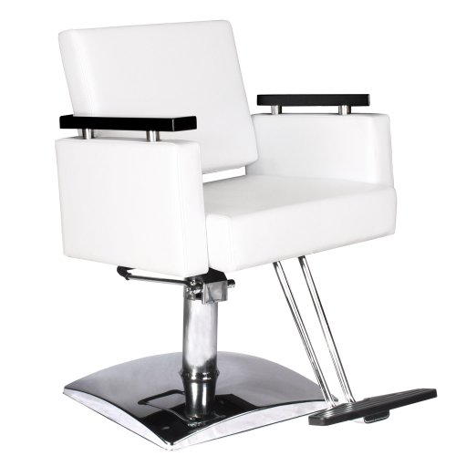 What is the price for modern white hydraulic styling chair for Salon equipment prices