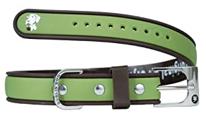 All Style 9-Inch by 14-Inch No Stink Dog Collar, Small, Olive Brown