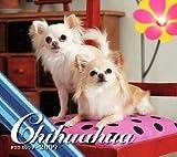 チワワカレンダー 2009