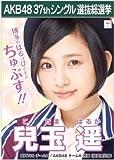 【兒玉遥】ラブラドール・レトリバー AKB48 37thシングル選抜総選挙 劇場盤限定ポスター風生写真 AKB48チームKHKT48チームH