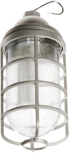 "Rab Lighting Vp200Dg/F22-3/4 Vaporproof Vp Ceiling Pendant Mount Cfl Lamp With Glass Globe And Cast Guard, Quad Type, Aluminum, 22W Power, 1200 Lumens, 120V, 3/4"" Hub, Natural"