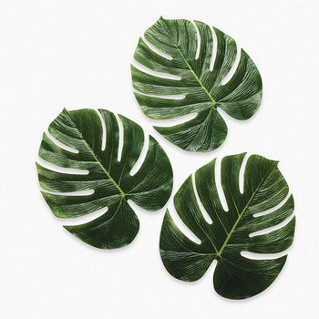 Palm Leaves - Party Decorations & Room Decor