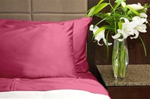 Pink Queen Size Sheets back-415187