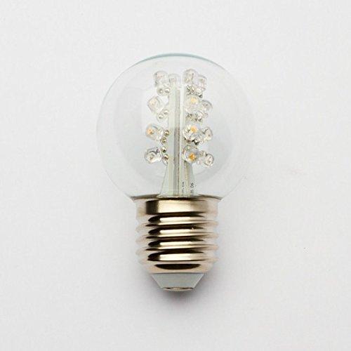 Warm White G50 Globe Led Bulb - G50 Transparent 16 Led'S - Warm White Patio String Bulb