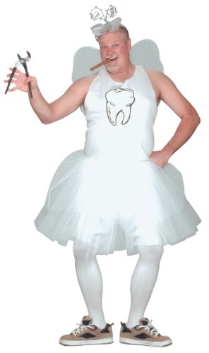 Costumes For All Occasions FW110145 Tooth Fairy
