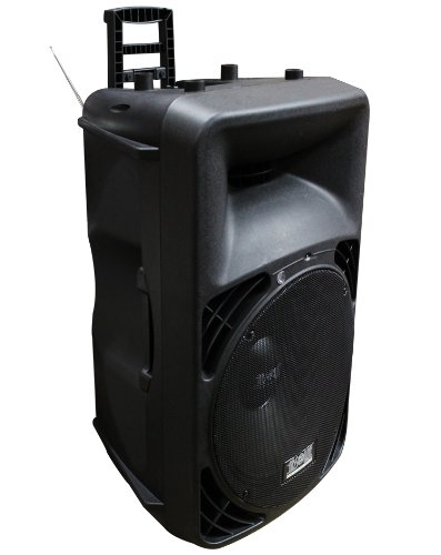 Absolute Usa Pro Uspro15M Portable 15-Inch Amplified Speaker With Mp3/Sd/Usb/Fm Radio Player Built-In Lcd Display