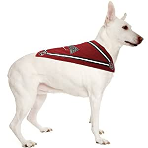 Sporty K9 South Carolina Dog Bandana, Small