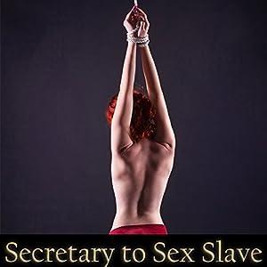 Secretary to Sex Slave Audiobook