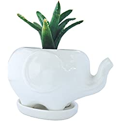 Cute White Ceramic Elephant Pot with Saucer Tray - Ideal for Small Succulent - Home & Office Decor Accent (Large Elephant, White)