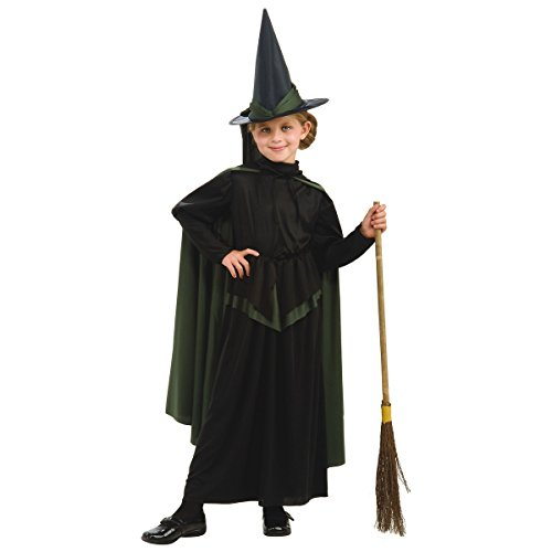 Wicked Witch of the West Costume - Large (Halloween Costumes Partycity)