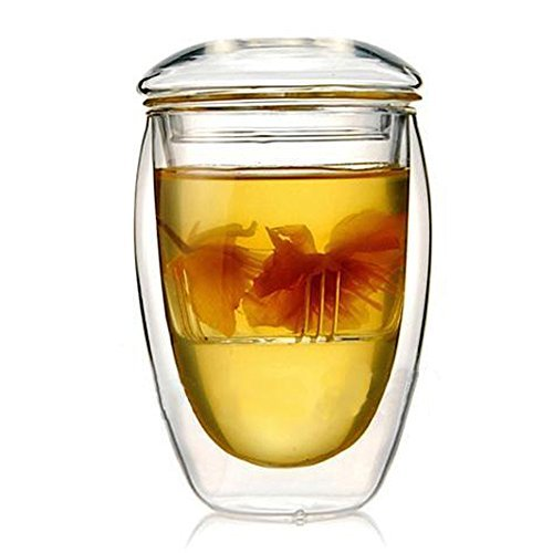 Double-Wall 12oz Insulated Glass Egg Shaped Mug Teacup with Lid and Filter