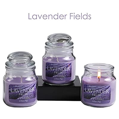 Hosley Set of 3 Lavender Fields Highly Scented, 2.65 Oz Wax, Jar Candle. We Hand Pour Our Candles Using a Wax Blends with Essential Oil Infused Fragrance Ingredients to Create a Highly Fragranced Aroma. Ideal for Spa, Aromatherapy and Everyday Use.