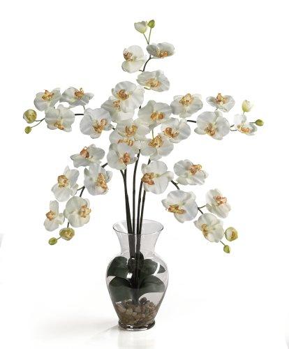 Silk Orchid Artificial Flower Arrangement - Phalaenopsis Liquid Illusion-Cream