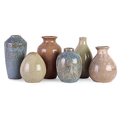 IMAX 4.25-6.25H in. Mini Vases - Set of 6