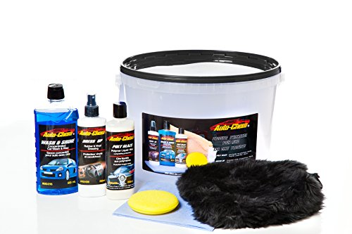 Auto-Chem Professional (1138) Complete Car Care Detailing Bucket Kit