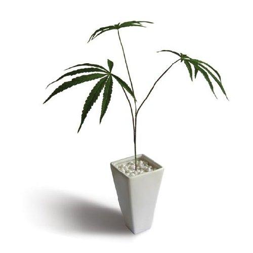 《人工観葉植物・造花》Cannabis sativa(ヘンプ/大麻)