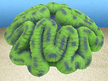 Nature's Image Artificial Corals: Open Brain Green