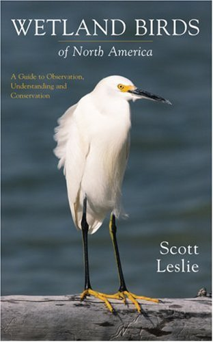 Wetland Birds of North America: A Guide to Observation, Understanding and Conservation