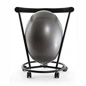Amazon The ERGO Chair an Ergonomic Exercise Ball