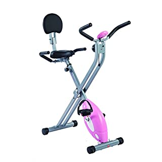 Sunny Folding Recumbent Bike