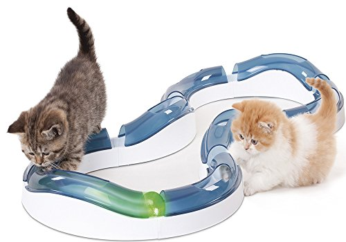 Catit-Design-Senses-Super-Roller-Circuit-Toy-for-Cats