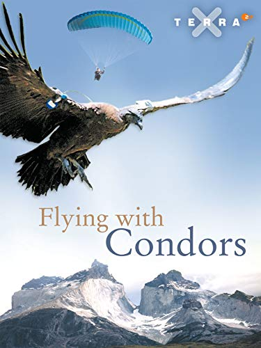 Flying with Condors on Amazon Prime Video UK