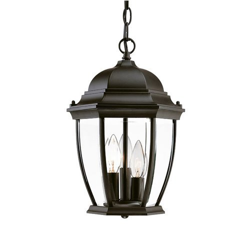 Acclaim 5036BK Wexford Collection 3-Light Outdoor Light Fixture Hanging Lantern, Matte Black (Commercial Pendant Light Fixtures compare prices)
