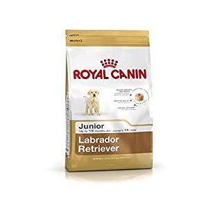 buy royal canin labrador junior 12 kg online at low prices in india. Black Bedroom Furniture Sets. Home Design Ideas