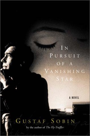 In Pursuit of a Vanishing Star: A Novel