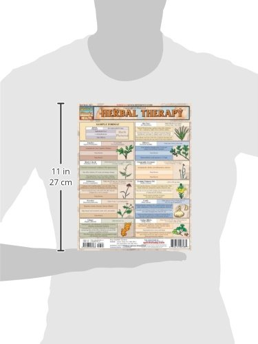 Herbal Therapy (Quickstudy: Health)