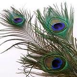 装飾用の羽根 孔雀