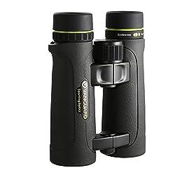 Vanguard Endeavor ED II 8x42 Binocular with HOYA ED Glass