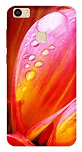 TrilMil Printed Designer Mobile Case Back Cover For Vivo Xplay 5