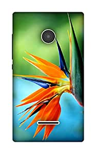 The Racoon Lean paradise hard plastic printed back case / cover for Microsoft Lumia 435