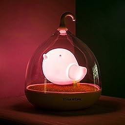 WOM-HOPE® Children\'s Night Lights Hand-held Design Touch Sensor Vibration Birdcage Lamp Bird Night Lights - Charging - for Kids, Baby ,Valentines Gift,Outdoor Lamp (Pink)