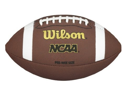 Wilson NCAA Pee Wee Composite Football (Pee Wee Football Equipment compare prices)