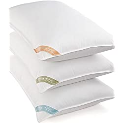 Charter Club Bedding, FEBREZE Scented Soft King Pillow