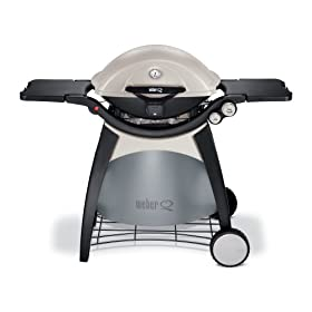 Weber 586002 Q 320 Portable Outdoor Gas Grill