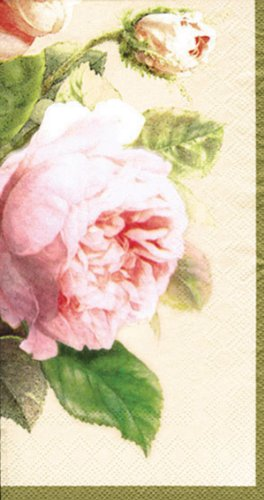 Ideal Home Range 16 Count Decorative Paper Napkins, Buffet, Fairy Rose Cream