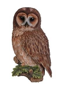 Vivid Arts Tawny Owl Plaque by Vivid Arts Ltd