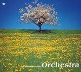 極上のクラシック5 オーケストラBEST