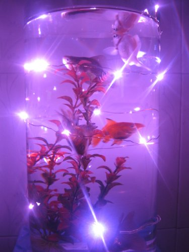 6.6Ft Pink Led Copper Light,-Battery Operated,With 20 Individual Leds,Decorate For Christmas,Wedding ,Halloween