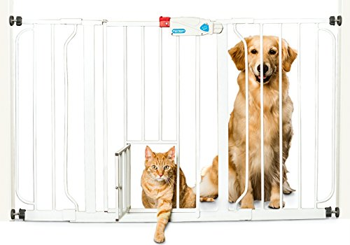 Carlson 44-Inch Extra Wide Walk Through Gate with Pet Door, 29 to 44-Inch (Baby Gate With Dog Door compare prices)