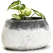 Grey And White Stone Pot With A Frosted Finish Rustic Look