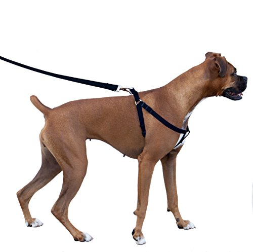 Majestic Pet Dog Harness-Best No Pull Harness for All Dogs-Sizes Large, Medium, Small-Adjustable and Heavy Duty No-Pull Leash & Harness & Walking Collar-COMBO [HARNESS-15x25 & LEASH-5/8x6ft]-Black (Medium Size Harness compare prices)