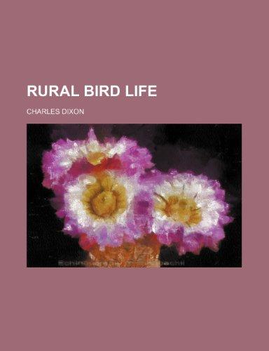 Rural Bird Life