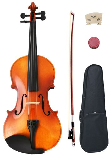 4/4 Full Size Student Violin Starter Kit (Bow, Rosin, Case)